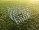 4ft sheep hurdle with pin (single)